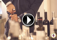 logo video destinazione del vino